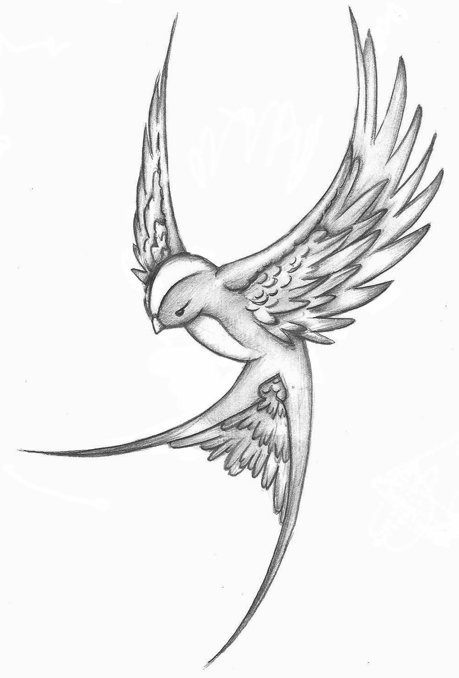 12 Inspiring Swallow And Sparrow Tattoos Art Sparrow Tattoo in dimensions 900 X 1329