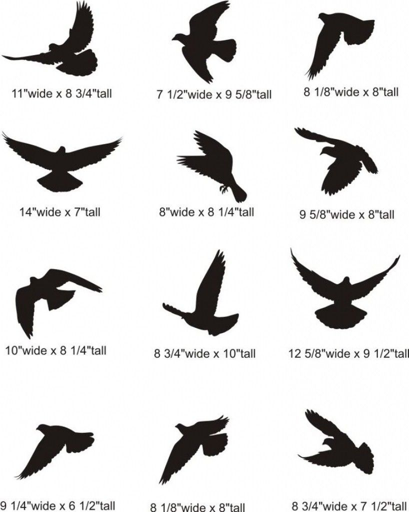 Best 100 Bird Tattoo Designs For The Bird Lover Tattto Small with regard to dimensions 818 X 1024
