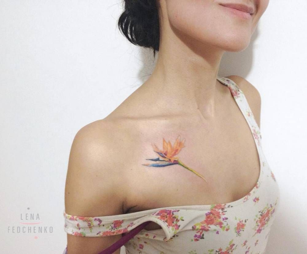 Bird Of Paradise Flower Tattoo On The Chest Ink Bird Of with size 1000 X 826