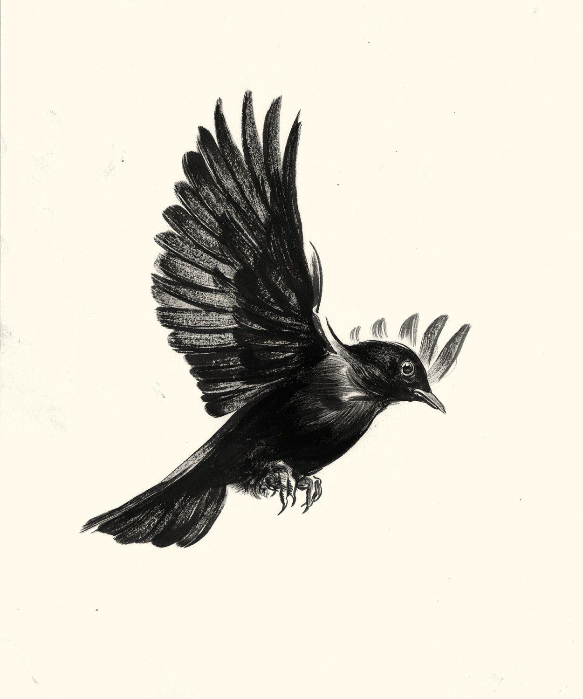 Blackbird Of Harkers Drop Bird Tattoo Black Bird Tattoo Birds pertaining to size 1251 X 1500