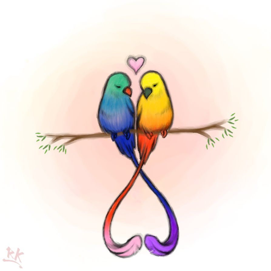 Love Birds Inspirations In 2019 Cute Drawings Of Love Love intended for proportions 894 X 894