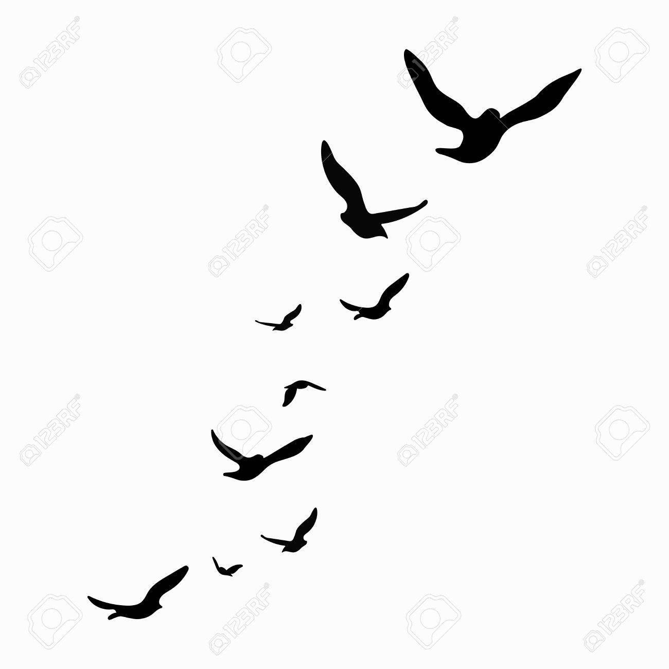 Silhouette Of A Flock Of Birds Black Contours Of Flying Birds with proportions 1300 X 1300