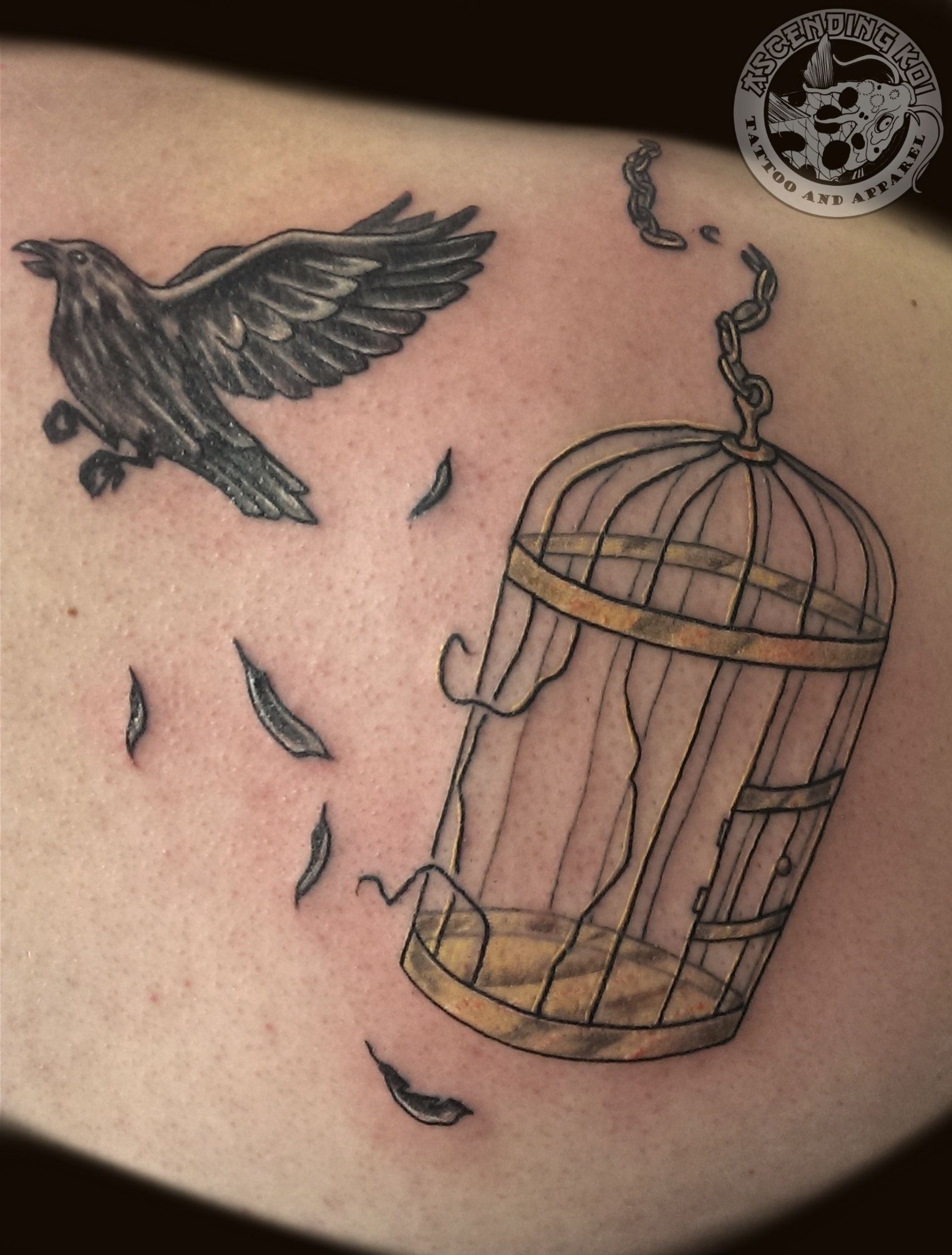 The Idea Of The Bird Breaking Free And The Cage Actually Looking with regard to size 1526 X 2012